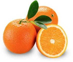 Orangen-Likör